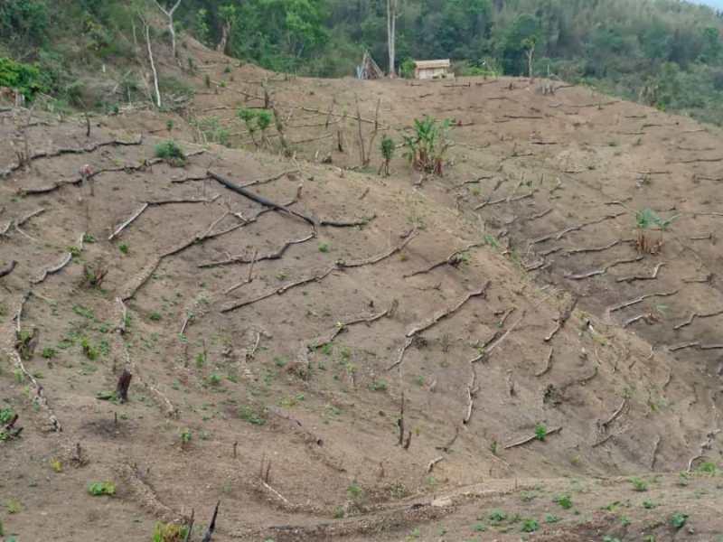 Tripura tribal council announces financial help for 5,983 'jhumia' families