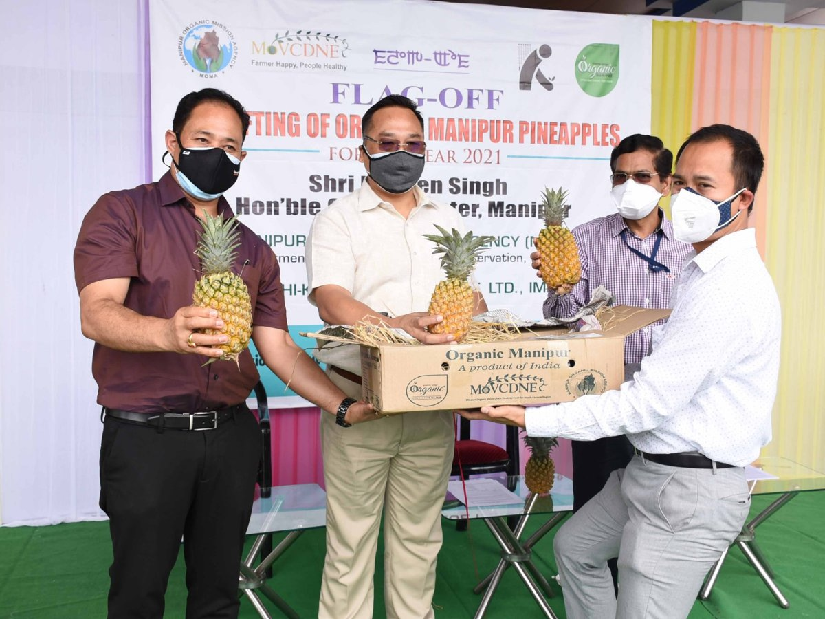 Pineapple export: Manipur flags off 1.2 MT consignment, this year's first