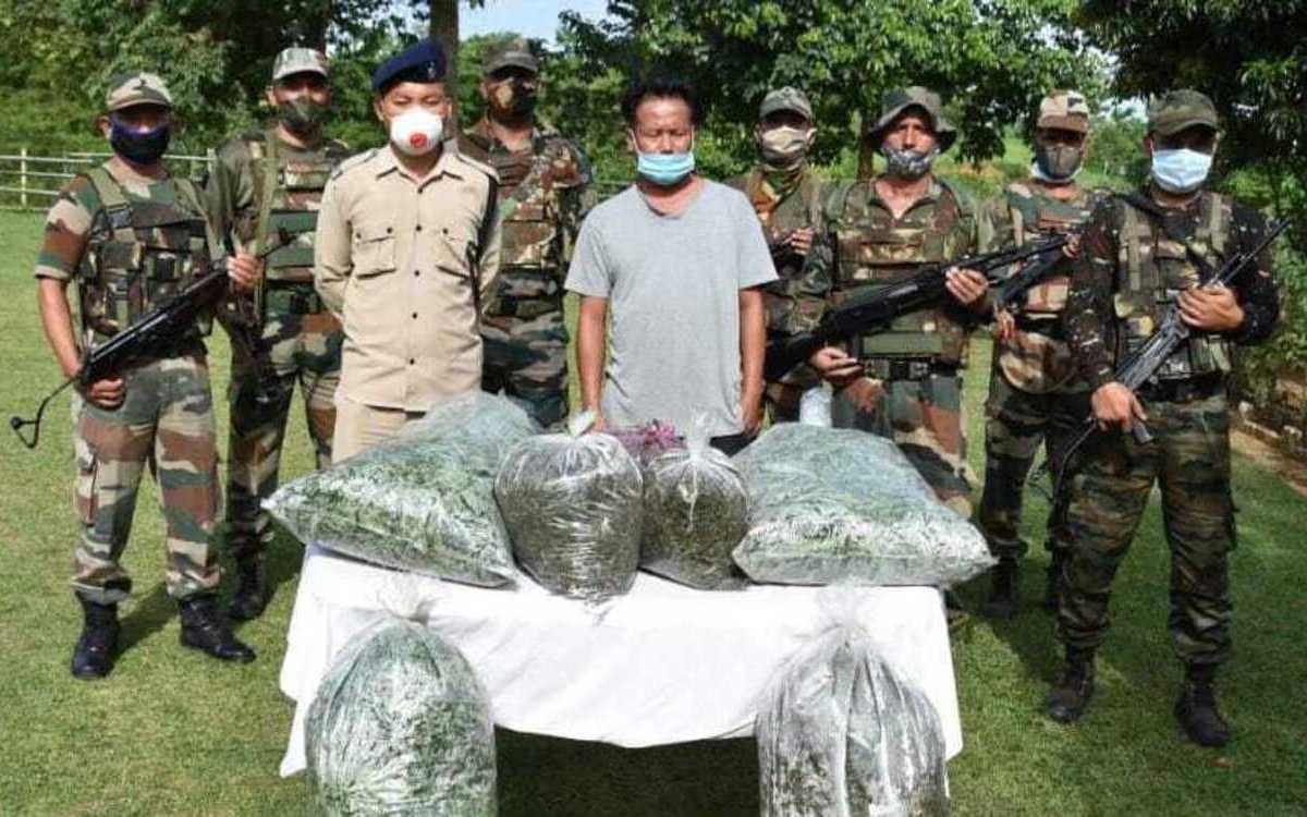 Nagaland: Drug peddler held with marijuana worth Rs 1.98 lakh in Peren