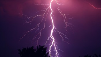 MP: Five killed, 18 injured in lightning strikes in Panna district