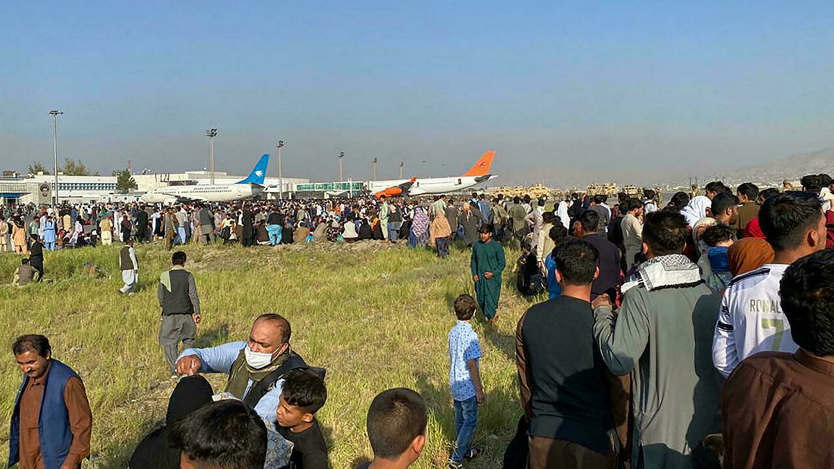 736 Afghans recorded for registration in India from Aug 1 to Sep 11: UNHCR