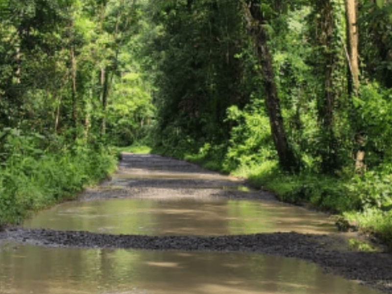 Key road linking Tirap, Longding districts in Arunachal to be reconstructed