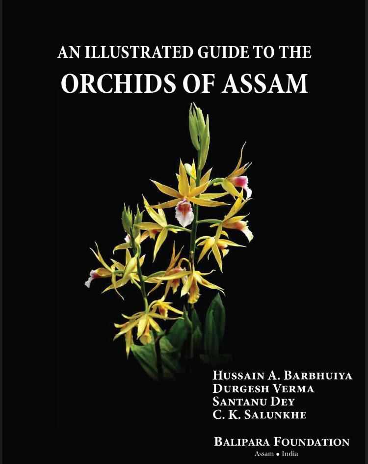 Assam orchids Balipara