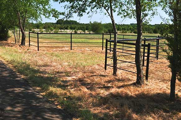 163-lamar-county-near-paris-texas-3