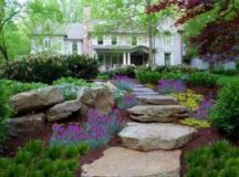 Choosing the Right Plants for your Landscaping Project ...