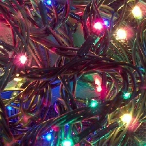Christmas-trees-by-numbers---last-slide_20161219071432-159532