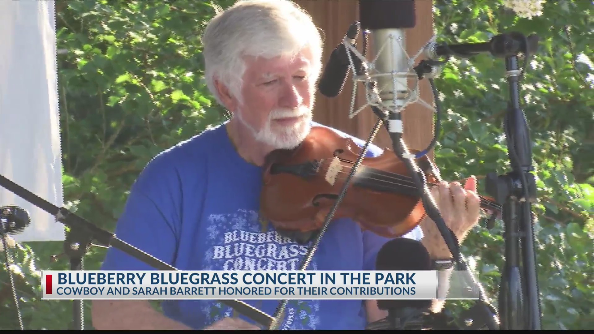 Blueberry bluegrass concert