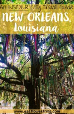 Best Things To Do In New Orleans new orleans bead tree pinterest