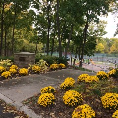 Park millage renewal will help sustain Flint's acres of green spaces, playlots, trails