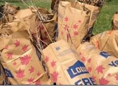 320 volunteers, 412 bags of trash: Flint River gets love, spring makeover