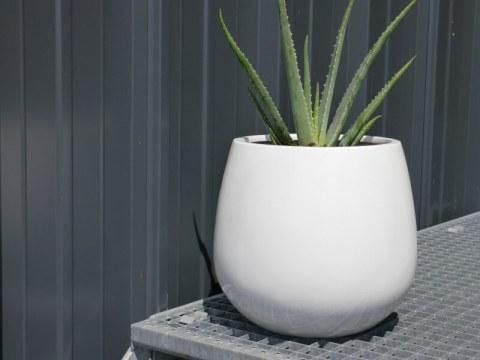 blumenkübel weiß pflanzk�bel yoro aus fiberglas in hochglanz wei�