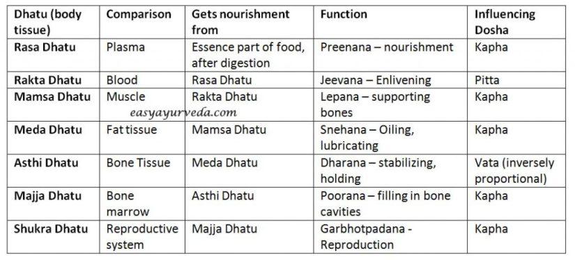 Dhatu - Body tissues