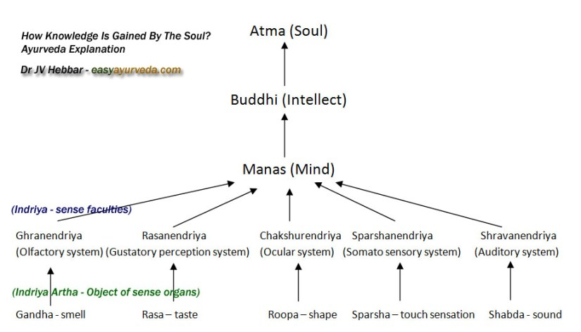 Knowledge acquiring process - Ayurveda