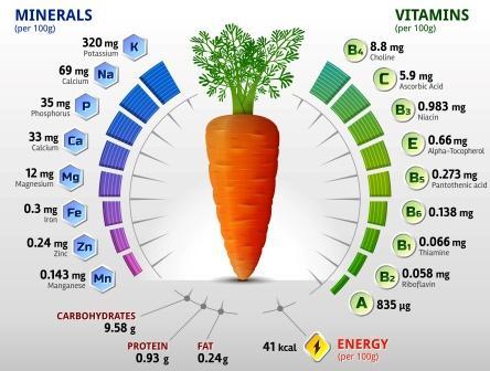 Daucus carota nutritional value