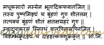 madhuca indica uses