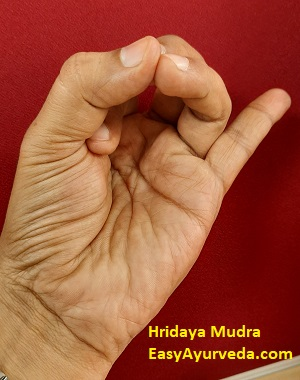 hridaya mudra  meaning method of doing benefits