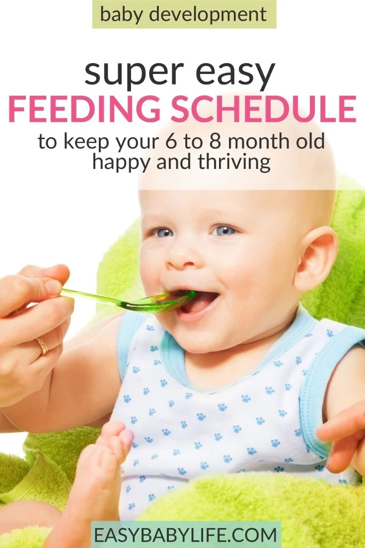 Simply And Practical Feeding Schedule For 6-Month-Old Babies Up To 8-