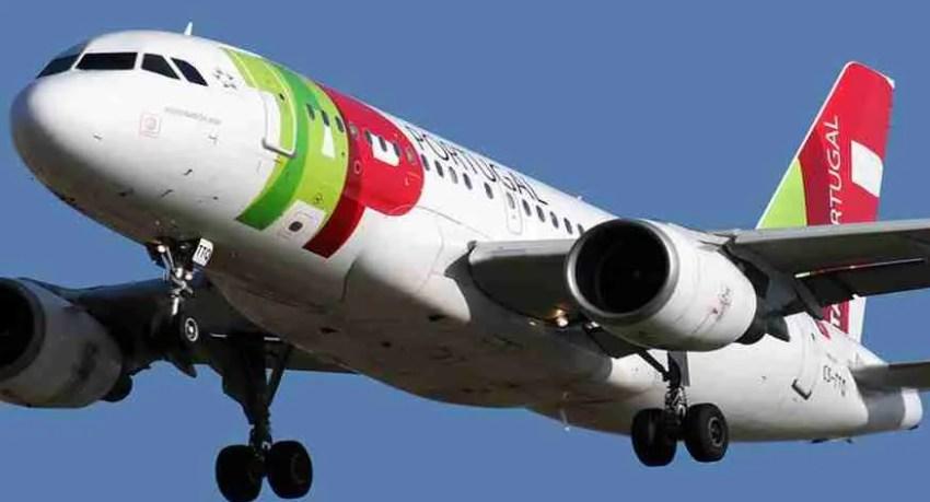 air portugal line. vuelos air portugal