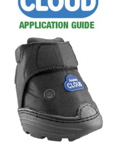 Download application guide also easyboot cloud rh easycareinc