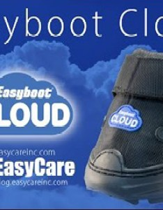 Application also easyboot cloud rh easycareinc