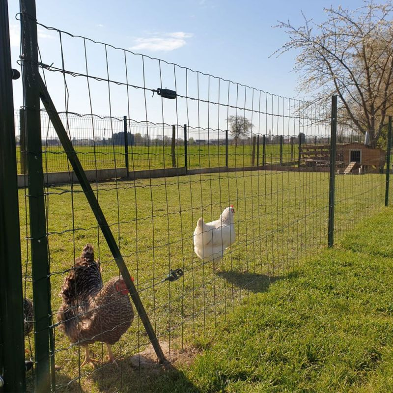 grillage soude souple easy garden 20 metres