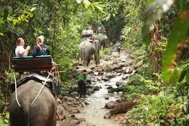 Elefantenreiten Khao Lak