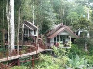Khao Sok mit Übernachtung im Baumhaus