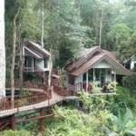Khao Sok Safari - Übernachtung im Baumhaus