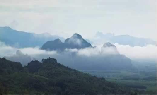 Khao Sok Discovery Tour - View Point