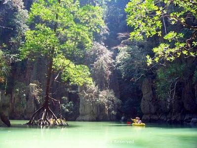 Exploring Hongs - Sea Canoe
