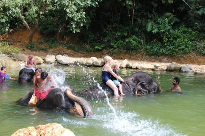Elephant Bathing with Kapong safari Tours