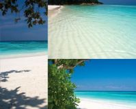 Koh Tachai Beaches
