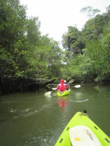 Krabi Tours -Kayaking fun