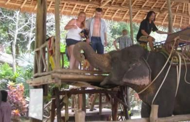 Phuket Elefantenreiten - Los gehts