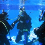 Phuket Scuba Diving Courses - Scuba Diver Course