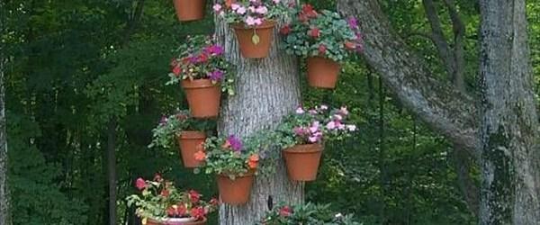 Cool Easy gardening plans