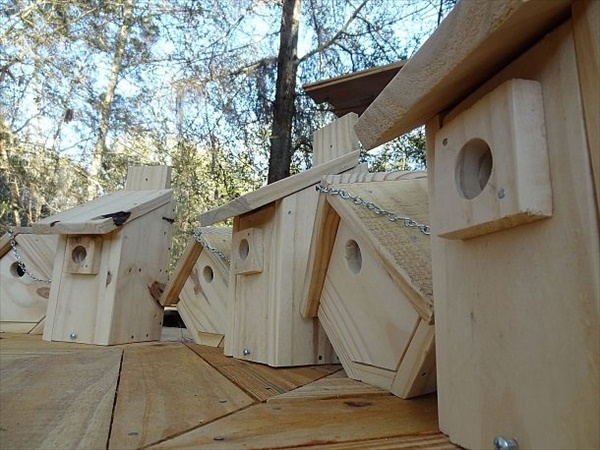 DIY Bird House made of pallet