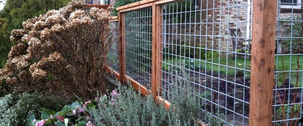 10 diy cheap garden fencing projects easy diy and crafts for How to build a cheap fence
