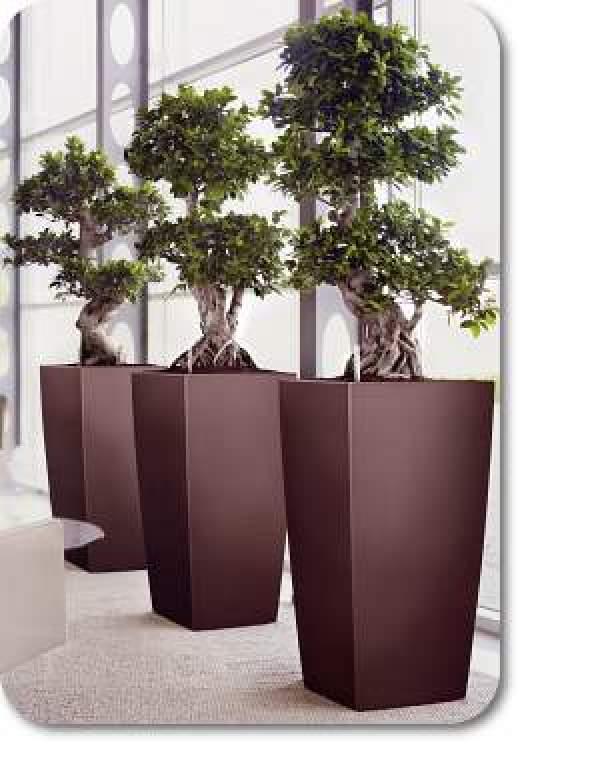 Easy Ideas for flower pots