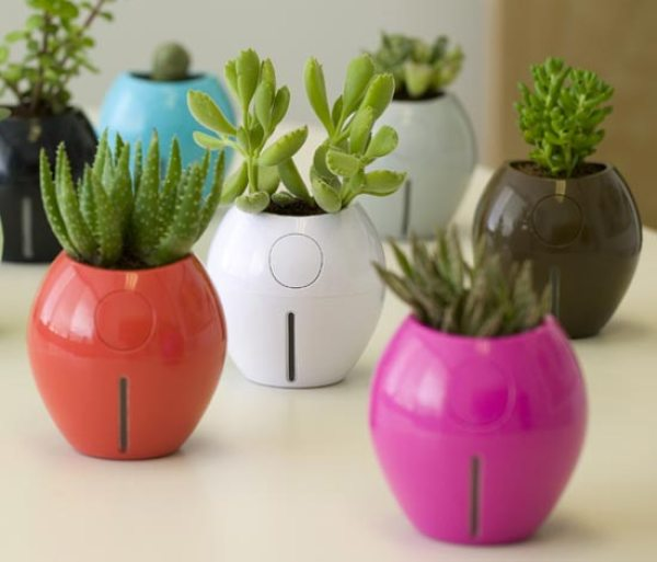 How to make planting pots