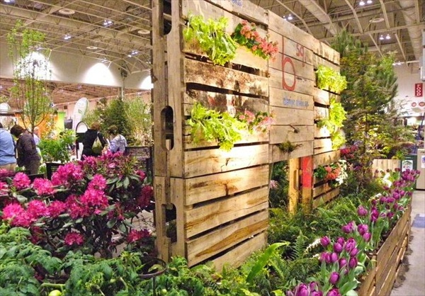 DIY how to grow vertical garden
