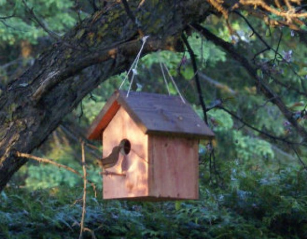 DIY Innovative birdhouse ideas