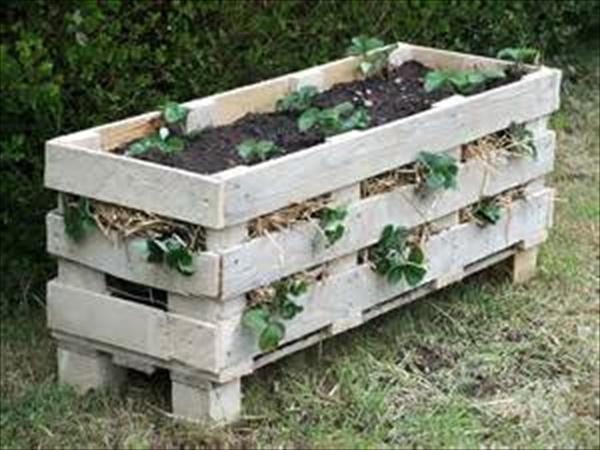 DIY large planter ideas