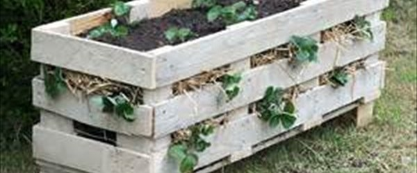DIY large planter ideas