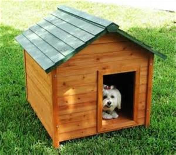 Easy Dog House ideas