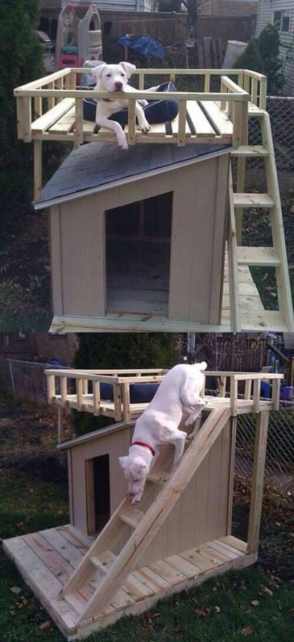 DIY pallet house project