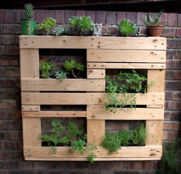 how to start home mini gardens