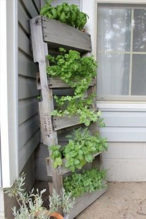 building gardens from pallets