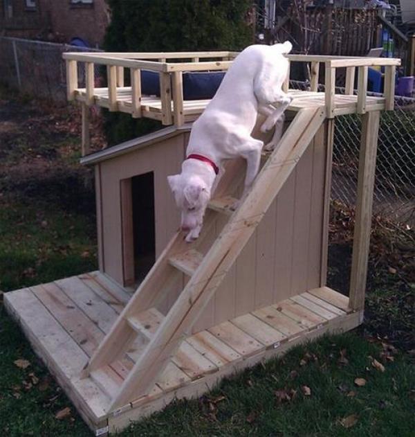 Wonderful pallet dog house