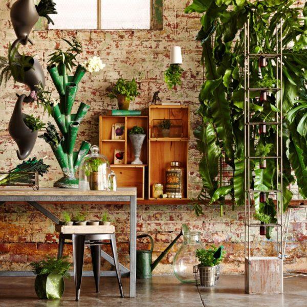 gardens planters ideas